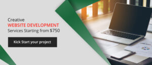 professional web developmentcompany