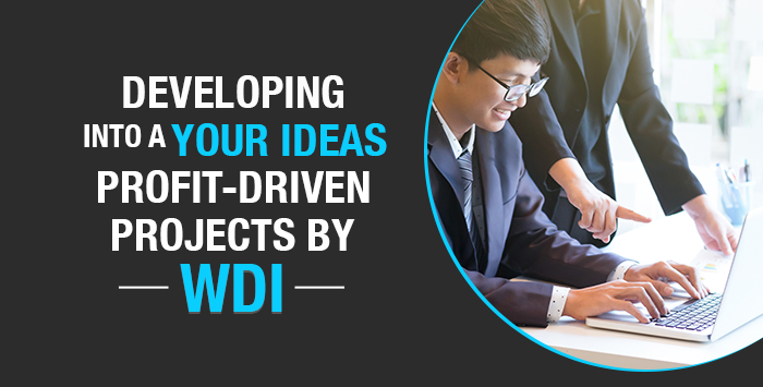 Developing Your Ideas Into A Profit-Driven Projects By WDI